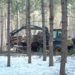 The forwarder completes the process by moving the pieces to the roadside for transportation.